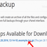 How to take partial backup of complete website which can be restored easily within cPanel?