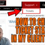 HOW DO I CHECK MY TICKET STATUS FROM CLIENT AREA