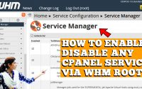 HOW DO I DISABLE/ENABLE ANY CPANEL SERVICES IN WHM ROOT