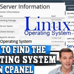 How to Find the Operating System(OS) installed on cPanel server