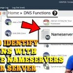 HOW TO IDENTIFY DOMAINS WITH PRIVATE NAMESERVERS IN SERVER