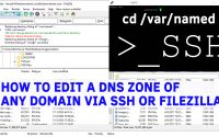 How to Edit a DNS Zone of any domain via SSH or WinSCP/Filezilla