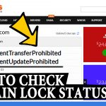 How to check your Domain Lock status