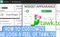 How to Customize the Look & Feel of tawk.to
