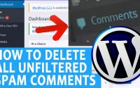 How to bulk delete spam comments in your WordPress website
