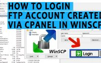 How to login FTP account created via cPanel in WinSCP