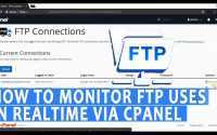 Monitor FTP uses in realtime via cPanel