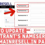 How to Update Nameservers of Registrant in DomainResell.in Panel