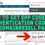 How to get EPP code/Authentication code from domain resell.in panel