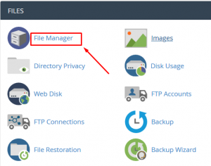 How to Setup file permissions of any file in cPanel