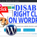 How to Disable Right Click on Images in WordPress