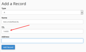 How to Create A Record in cPanel
