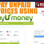 How to pay an invoice at RedServerHost using PayU money