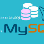 what is MySQL database used in web hosting